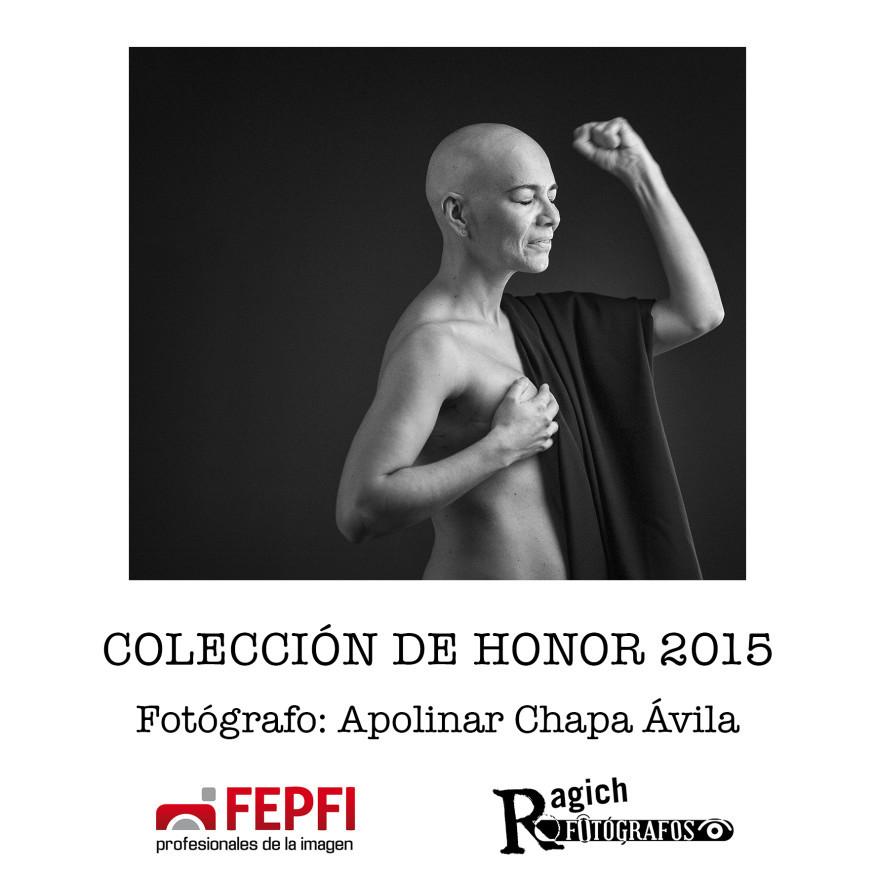 Coleccion2015
